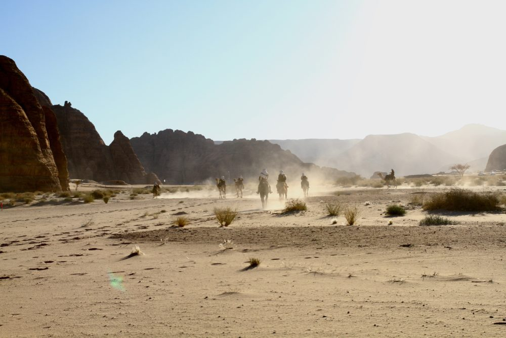 SAUDI ARABIA'S DESERT RICHES
